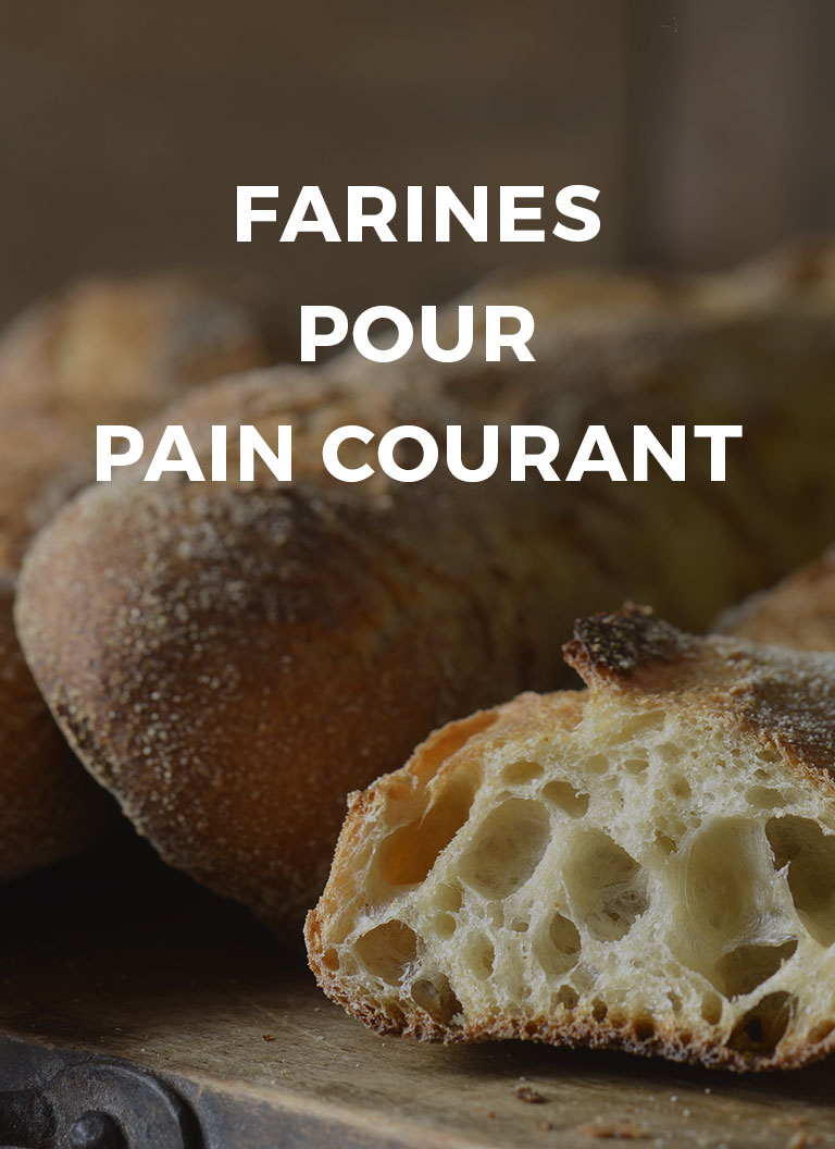 couv-categorie-pain-courant