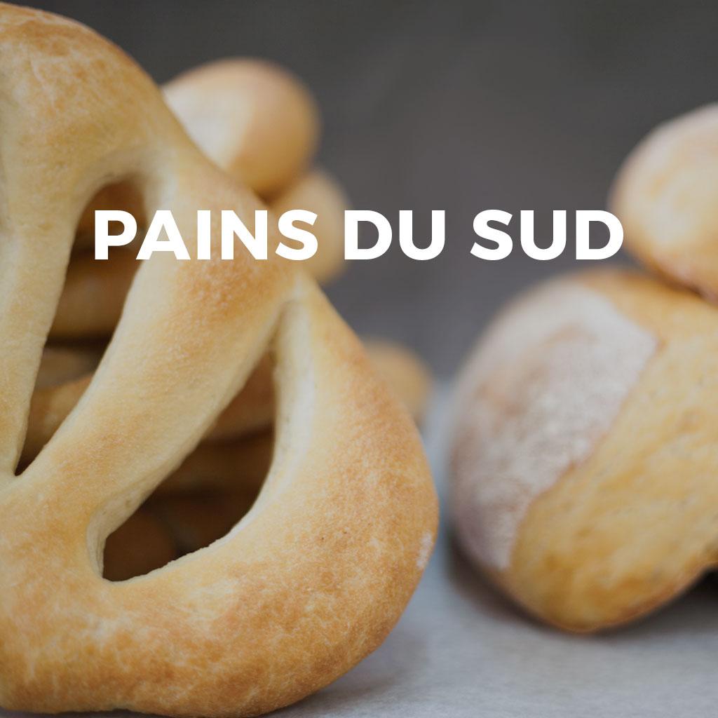 pains-du-sud-vignette