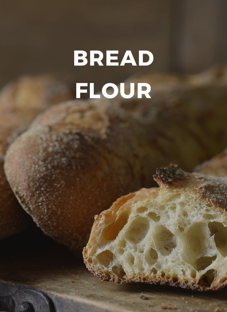 couv-categorie-pain-courant-en